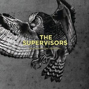 the-supervisors-supervising-the-industry